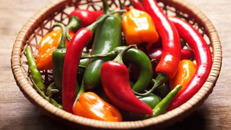 ljuta hrana za metabolizam
