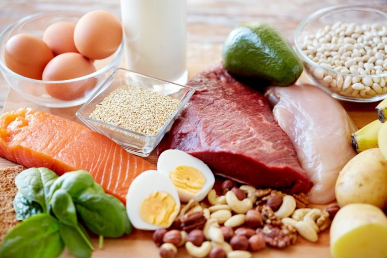 proteini za metabolizam