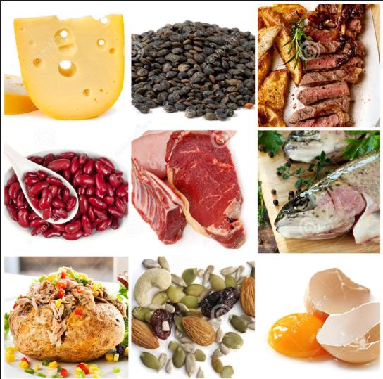 hrana_bogata_proteinima